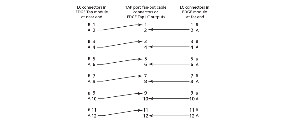 Near and Far End Modules to the TAP Port Cable