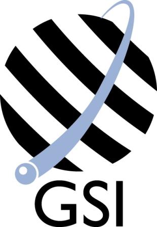 Global Security International
